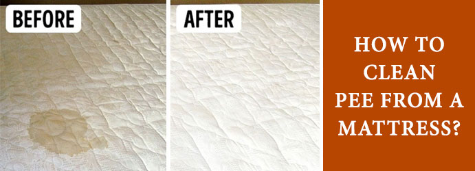 How To Clean Pee From a Mattress?