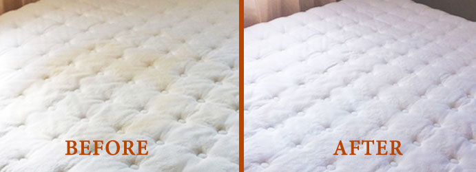 Mattress Stain Removal Services Melbourne