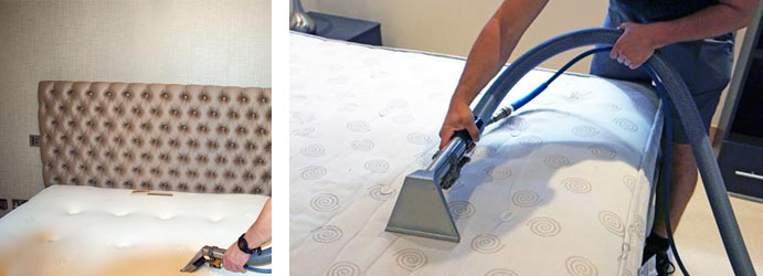 Image result for Professional Mattress Cleaning