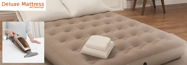 Air Mattress Mold Removal