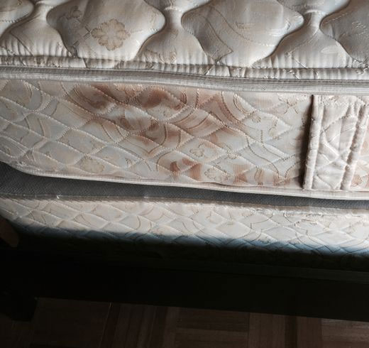 Mattress Mould Treatment