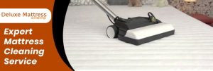 Expert Mattress Cleaning Service