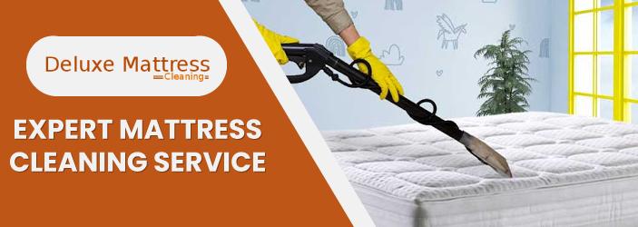 Expert Mattress Cleaning Service