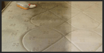 Mattress Dust Mite Treatment Melbourne