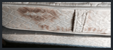 Mattress Mould Removal Perth