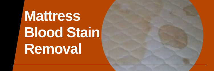 Easy Way To Remove Blood Stains From The Mattress Deluxe Mattress Cleaning